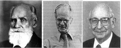 גוזף וולפה (1904-1990), ברהוס פרדריק סקינר (1915-1997), איבן פטרוביץ פבלוב (1849-1936)
